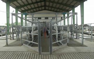 DAIRY FARMING WITH 2000 MILKING COWS - Nolan UK Projects